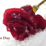 Happy Rose Day Sms in Hindi, Gulaab Shayari