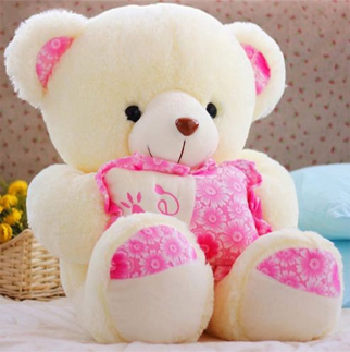 cute-teddy-dp-for-whatsapp