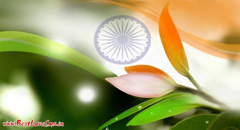Images of Tiranga