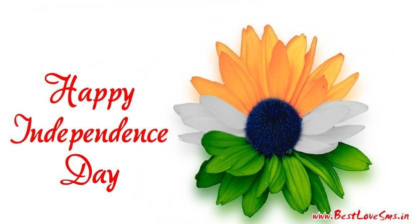 Flower With Indian Flag Hd: Most Touching Independence Day Images With Indian Flag