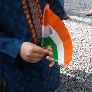 DP For Independence Day
