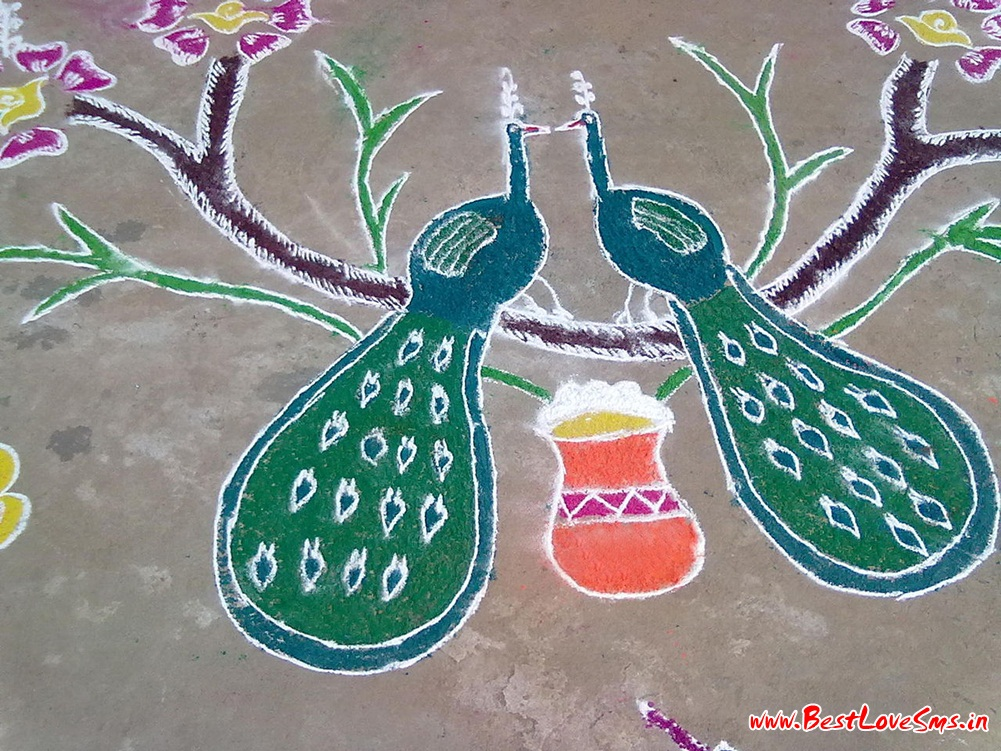 Rangoli of Peacock
