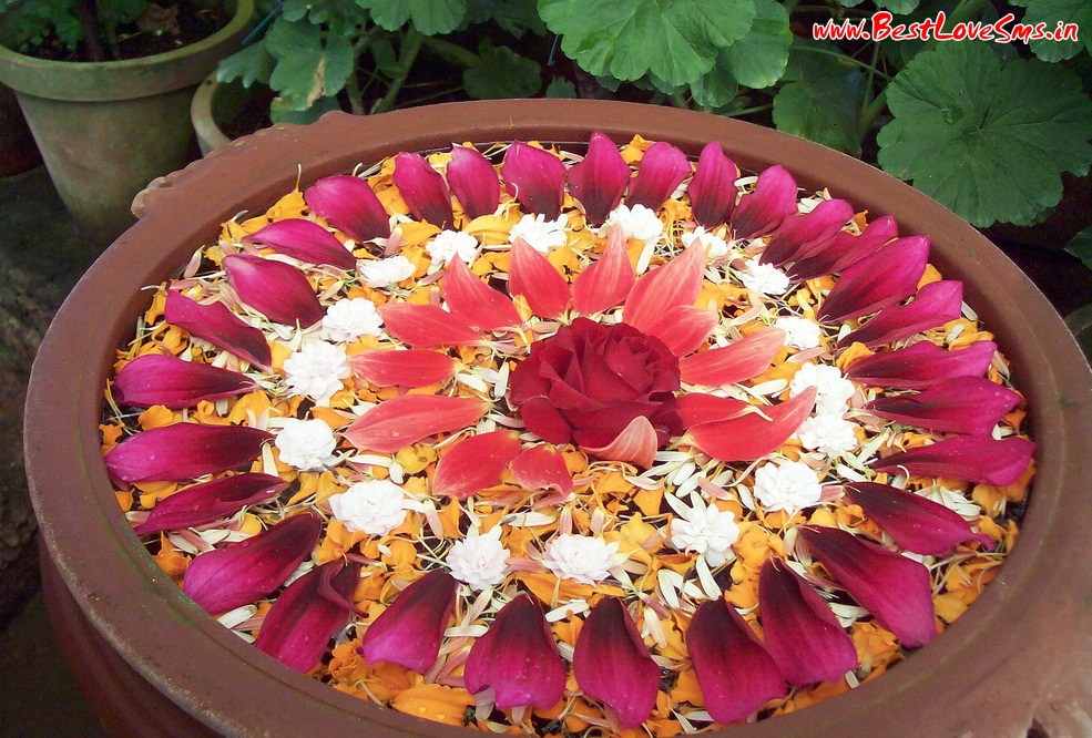Rose Flower Rangoli Design