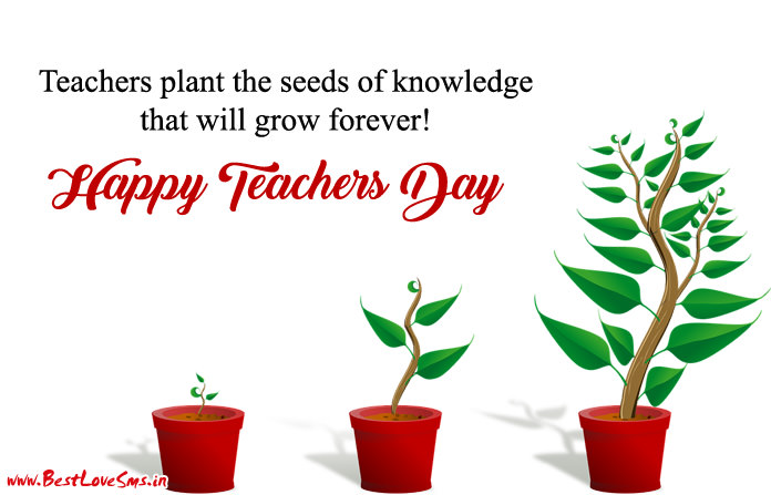 Teachers Day Quotes with Images