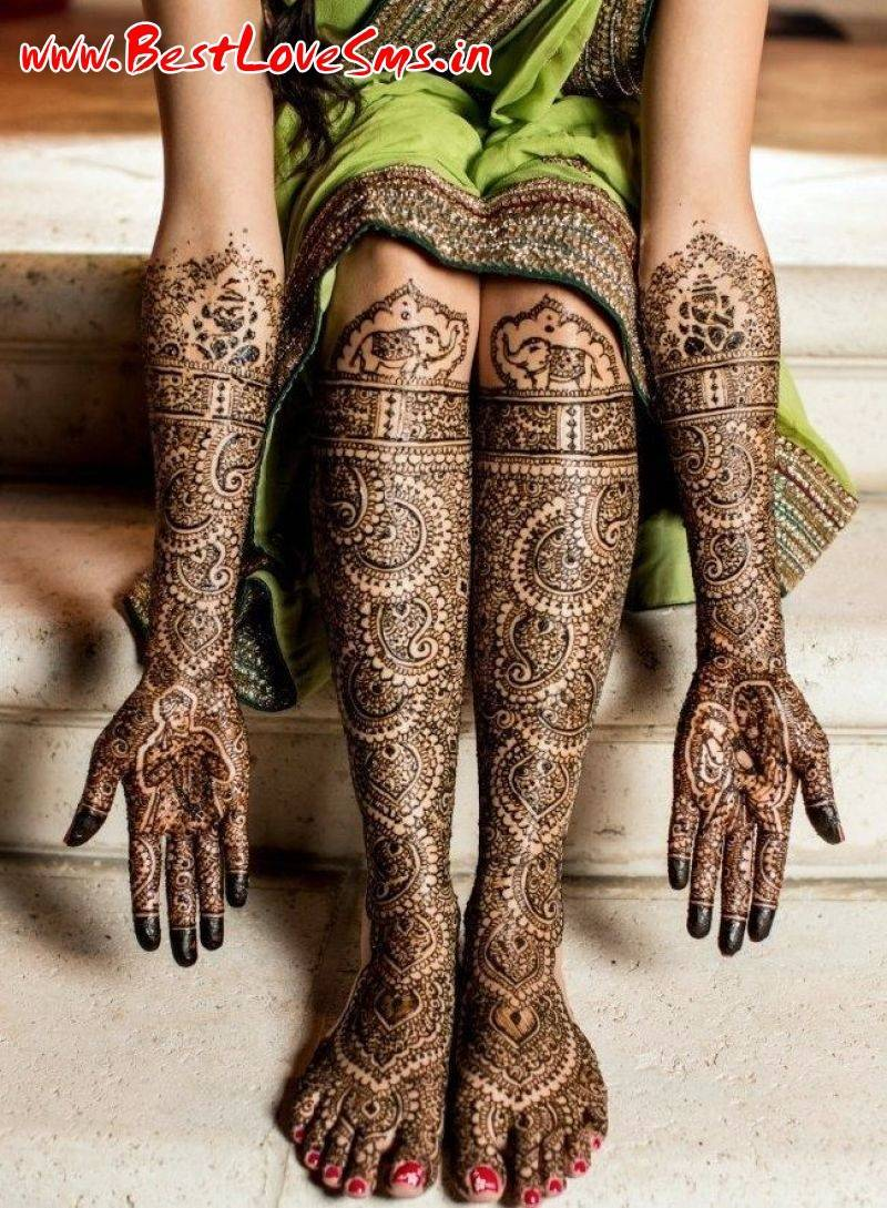 Professional Mehndi Designs Bridal Full Hand