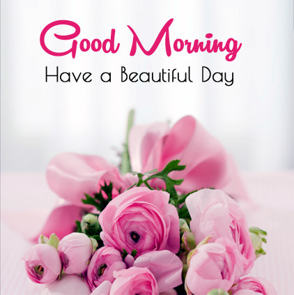 beautiful good morning wishes in english rose