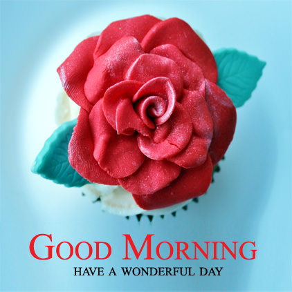 have a wonderful day profile pics